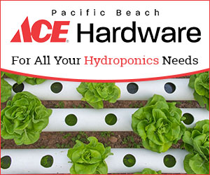 Ace Hardware Corporation campaigns first seen May 2018.